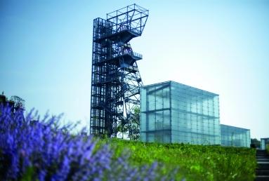 2 Przestrzeń parkowa Muzeum Śląskiego, w tle wieża widokowa i szklane bryły doświetlające wnętrze, fot. Witalis Szołtys (2)